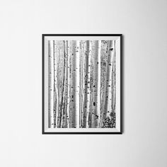 Birch Tree Print / Black and White Print / Instant Download / Printable Home Decor / Nursery / Modern Decor / Monochromatic Nature Print