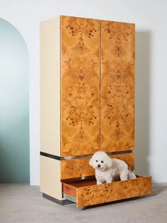 Burl and Chrome Armoire – Coming Soon Century Modern Furniture, Burl, Baughman, 1970s Furniture, Furniture Designer, American Furniture, Milo Baughman, Armoire, Chrome