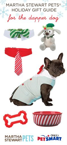 #marthastewartpets holiday gift ideas for your dapper dog! How fun is that bow tie collar? Available @petsmartcorp