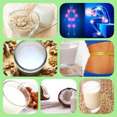 Las 6 mejores leches vegetales