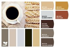 Polished mahogany--for stair railing. Sherwin Williams chips applied to a design seeds palette Taupe Kitchen, Grey Kitchens, Cool Kitchens, Living Room Color Schemes, Colour Schemes, Color Combos, Taupe Color Palettes, Taupe Paint, Best Kitchen Colors