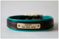 Collar – Pacific teal blue - daisy1010