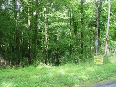 Rural vacant land. Waterfront on Unadilla River. Tax Map #: 327.00-2-13.00 Lot Size: 7.53+/- Acre School District: Sidney CSD Full Market Value: $25538 Inspection: Vacant Land. Drive by anytime.