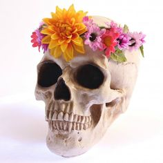 Add a little boho to your Halloween with this cheeky Coachella skull DIY!