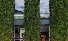 Mimarihaber Dünya'nın en büyük dikey bahçesine sahip apartmanı  Mimarihaber Dünya'nın en büyük dikey bahçesine sahip apartmanı  Mimarihaber Dünya'nın en büyük dikey bahçesine sahip apartmanı  Mimarihaber Dünya'nın en büyük dikey bahçesine sahip apartmanı
