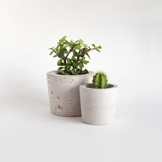 Hand-cast, cured and polished by Ro Co in their studio in North London, these plant pots are made of Portland concrete and coir, which is coconut husk, to make them lightweight. Recommended for indoor use.
