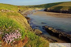 Evening sunshine on the small but perfectly formed near Places To Travel, Places To See, Holiday Cottages In Cornwall, North Cornwall, Newquay, Rock Pools, Holiday Accommodation, Holiday Destinations, Beautiful Images