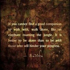 Wise wirds of Budha Motivacional Quotes, Great Quotes, Quotes To Live By, Inspirational Quotes, Path Quotes, Profound Quotes, Yoga Quotes, Change Quotes, Guter Rat