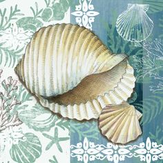 Medium caracol sea shell E Vladykina                                                                                                                                                                                 Mais