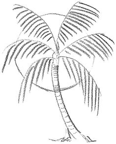-How to Draw Palm Trees in Front of the Sun Drawing Lesson When I see a palm tree, I think of vacations, beaches, and relaxing. Do you want to learn how to draw Palm. Sun Drawing, Beach Drawing, Wall Drawing, Drawing Flowers, Flower Drawings, Figure Drawing, Palm Tree Sketch, Tree Sketches, Drawing Sketches