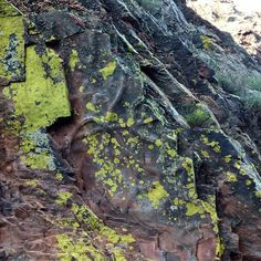Penha Garcia - fossiles viajarporquesim.blogs.sapo.pt