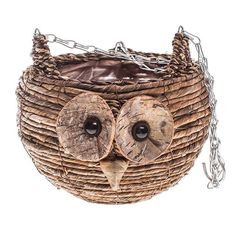 Owl Hanging Basket - Caths Direct