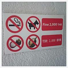 Singapur. Zakazy