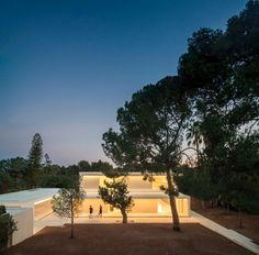 House in a Pine Forest by Fran Silvestre Arquitectos (35)