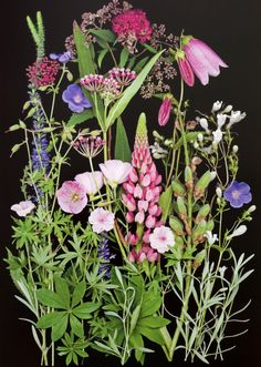 Folk art. Old-time cottage gardens offer a style we think of as an English Garden