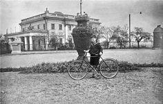 Voronsov Palace Odessa 1950