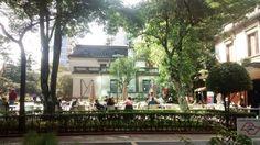 Café - Casa das Rosas - São Paulo, SP