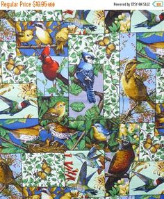 50% OFF FINAL SALE Backyard Birds Collage, Different Species of Birds as Seen in Backyards of Many Climates in a Collage Format, By the Yard