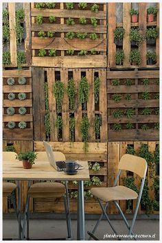 how to hang a vertical garden - Our BLOG - Vanilla Slate Designs, Interior designers, Bloggers & Online home ware store based in Sydney.: