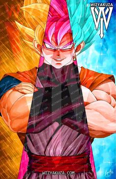 Son Goku: SSJ, SSB & Goku Black SSR