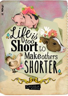 Life is too short to make others shorter. Live vegan.