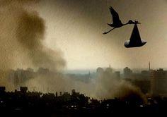 Tammam Azzam - Stork in Syria