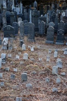 """""""The bitterest tears shed over graves are for words left unsaid and deeds left undone""""Harriet Beecher Stowe Criminal Minds quote from""""Blood Old Cemeteries, Graveyards, Criminal Minds Quotes, Pet Cemetery, Between Two Worlds, Abandoned Places, Wonderful Places, Creepy, City Photo"""