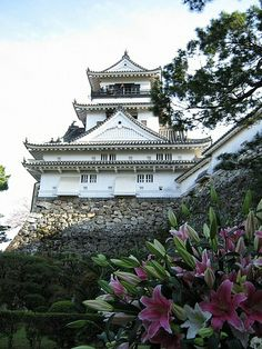 Kochi Castle Main Tower & Flowers #japan #kochi