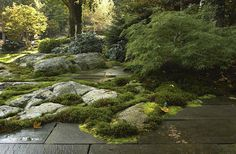 A garden of ledge, cut bluestone pavers and moss, in Cohasset, MA. Designed by Zen Associates