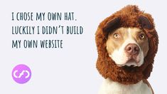 You know your business inside out. We build your website, you manage your website safe in the knowledge that you are backed by a web designer with over 20 years experience. Build My Own Website, Nottingham, Design Agency, 20 Years, Web Design, Knowledge, Business, Design Web