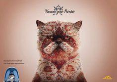 ETA vacuum cleaner: Cat, Prague http://adsoftheworld.com/media/print/eta_vacuum_cleaner_cat