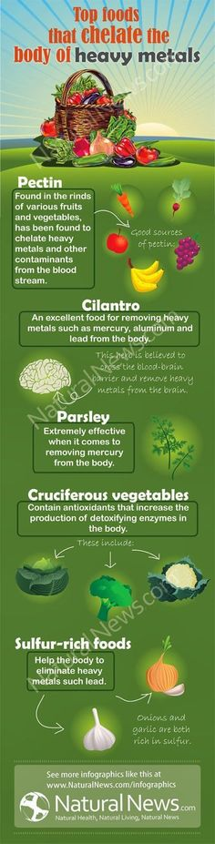 Herbal remedies for limited exposure and removing toxic heavy metals from our bodies - Top Foods that Chelate the Body of Heavy Metals #Infographic