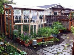 One of my dreams is to put a low greenhouse like cold frame using beautiful old windows - under my windows along the south side of my house for winter. run on sentence. Window Greenhouse, Greenhouse Shed, Greenhouse Gardening, Small Greenhouse, Greenhouse Wedding, Portable Greenhouse, Outdoor Projects, Garden Projects, Lawn And Garden