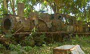 Globo Repórter - Sonho de cruzar a Amazônia sobre trilhos hoje enferruja na mata | globo.tv