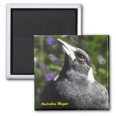 Australian Eastern Water Dragon 2 Inch Square Magnet
