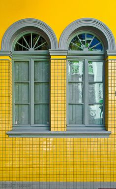 A touch of yellow by Paulo Heuser, via Flickr ~ Porto Alegre, Brasil