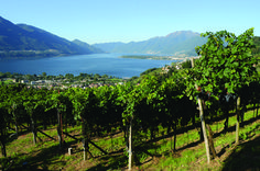 - That's All Trends Mountains, Nature, Travel, Outdoor, Trends, Art, Wine Tasting Party, Locarno, Outdoors