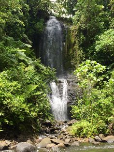 7 Tips for Surviving the Kitti 6 Waterfalls Hike - Pohnpei, Federated States of Micronesia