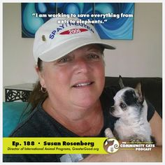 """Susan Rosenberg has received two """"calls of a lifetime,"""" as she calls them—first from Paul Jolly to work for the Petco Foundation, after tremendous success in setting up a community adoption program at her local Petco; second, from GreaterGood.org, who offered her the Director position of International Animal Programs. Susan's work has touched the lives of animals & people from coast to coast—while working for the Petco Foundation, she orchestrated community adoption programs at stores across…"""