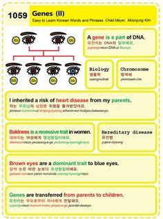 (1059) Genes (II)