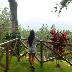"""""""Todo lo que somos es el resultado de lo que hemos pensado; está fundado en nuestros pensamientos y está hecho de nuestros pensamientos.""""  Buda  Feliz Domingo Amigos  #panama #sunday #quotes"""
