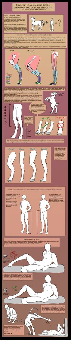 How To Draw Unguligrade Bipeds (IE: Hoofed People) by ~The13thBlackCat on deviantART