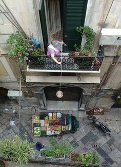 U PANARU In Sicilia c'è chi fa la spesa ancora così!
