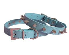 Pet Premium Blue Leather Spikes Studded Pet Dog Collar (L) >>> To view further for this item, visit the image link.
