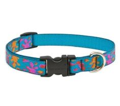 Wet Paint Medium Dog Adjustable Collar http://www.chicpooch.com/lupine-pet-medium-dog-collars-leashes-harnesses-leash-couplers.html
