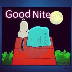 Good night #Pinterest ... #goodnight #Twitter -_-