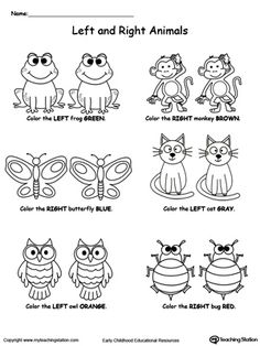 """Help your child practice recognizing left from right with """"Left And Right Animals"""" printable worksheet. Your child will color the animal either on the left or on the right based on the instructions."""