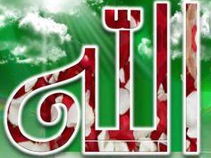 DesertRose... Allah