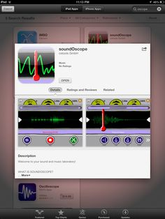 soundOscope.  Free app from iTunes designed for children's use. Record, analize and manipulate sound.