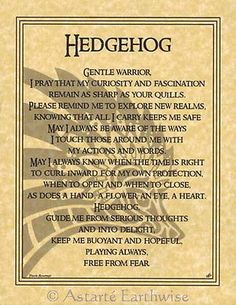 HEDGEHOG PRAYER POSTER A4 SIZE Wicca Pagan Witch Goth BOOK OF SHADOWS